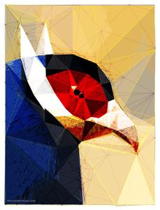 20130220152455-bird1