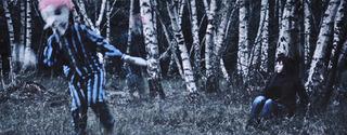 20130221222151-jde_silver-birch-forest_2010
