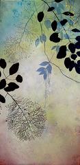 20130221231545-ivy_jacobsen_smoke_bush_2_xl