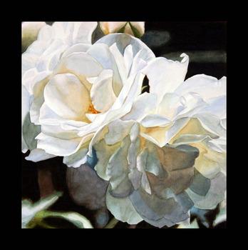 20130225043710-white_roses