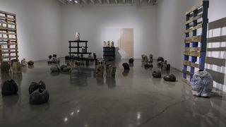20130225215805-galleryentry
