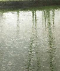 20130226221233-bt_001_arbres_au_bord_du_canal