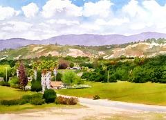 20130227014315-valley_center_california_faa