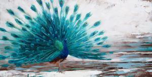 20130228200331-main_peacock_wastescape