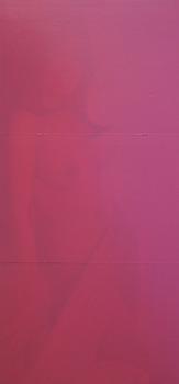 20130303025017-pink_pink_nude_23x35_2012_enamel_acrylic
