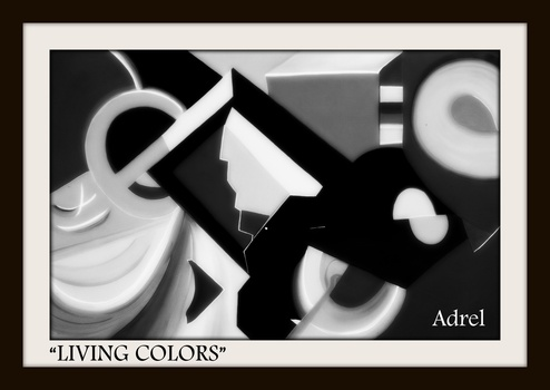 20130306211956-living_colors_framed_blk_and_wht_signed
