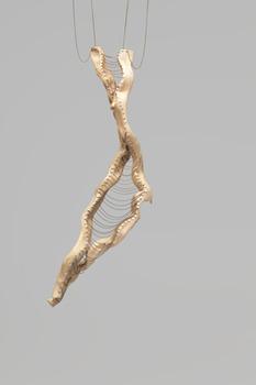 20130307232603-limbs