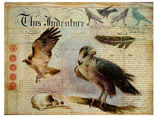 20130309090843-falcon__mixed_media_document