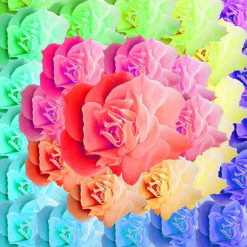 20130313202004-flowerspiral