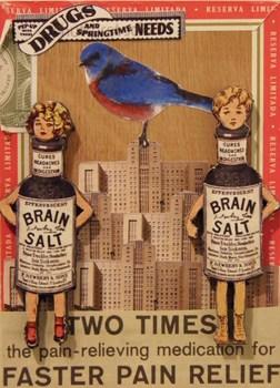 20130314150519-brain_salts