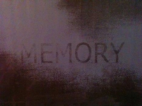 20130315161154-memory_toile_mauve_site