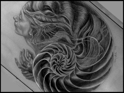 20130324094257-_nautilus_scan_on_angle