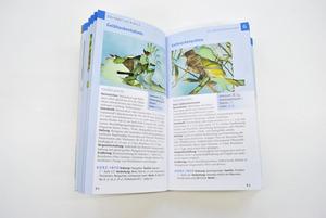 20130326195323-libro___copy