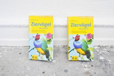 20130326195439-libros_4_copy