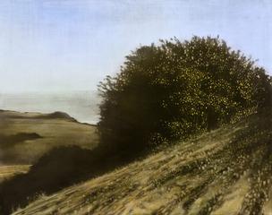 20130331072318-landscape