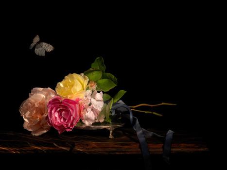 20130415091828-2_underwater-still-life-artist-vanitas-0444-isis-bound