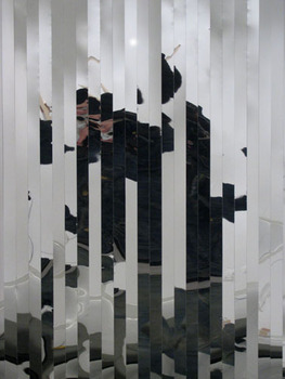 Mirrordetail1