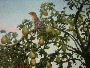 20130413100813-partridge
