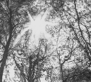 20130414163101-melancholy_strings_1
