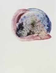 20130416195650-dandelion