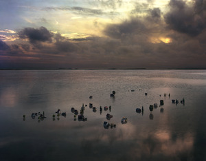 20130417161758-wrede_real_landscapes_nach_dem_regen_after_the_rain