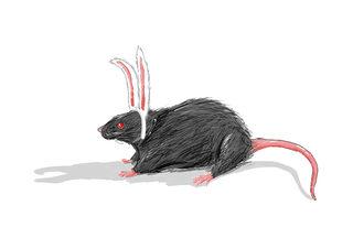 20130427092413-lapin_rat_inviation_murat_2013