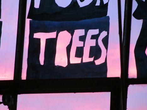 20130503204156-trees