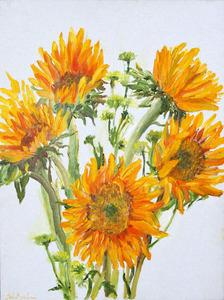 20130507062923-baghdasarian__seda_sunflowers