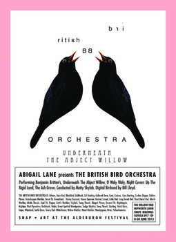 20130507084302-thumb-abigail_lane_-_bird_orchestra_poster