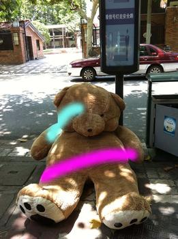 20130510173543-bear