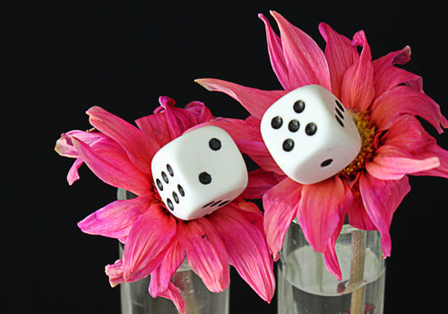 20130911183505-pfl12_cc_flora__hey_baby__let_s_gamble___28_