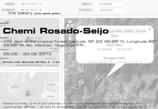 20130522160845-chemirosadoseijo
