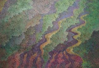 20130526161130-coral-mosaic-21x31