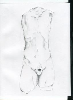 20130528021542-torso1