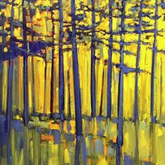 20130602014804-cn-presidio-grove-morning-light-1