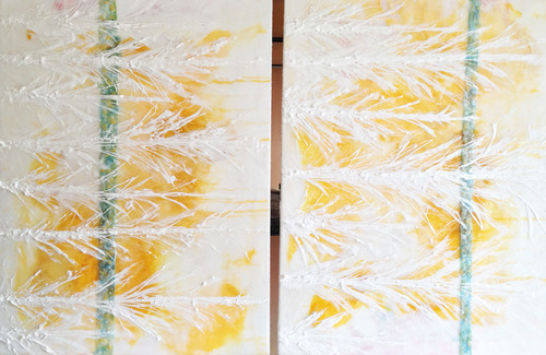 20130603002019-feathers__diptych