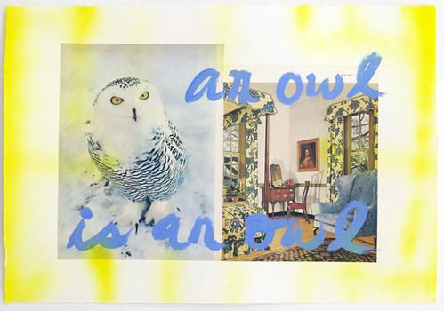 20130603154918-an_owl