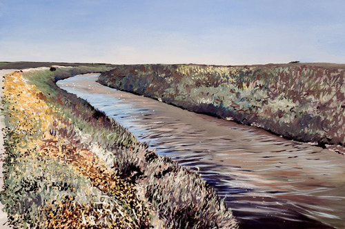 20130605000134-shoreline_marsh