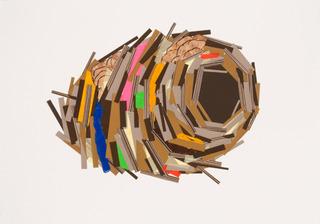 20130606073854-bird-nest-study-_5_low