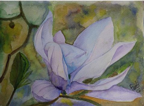 20130611145205-magnolia