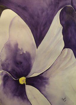 20130613161332-violeta