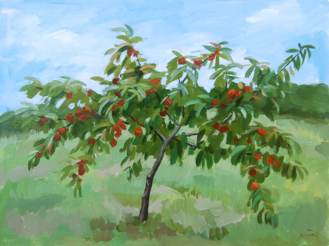 20130620150311-tree4new