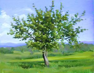 20130618225206-tree-3