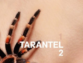 20130626031453-tarantel2_web1-460x347