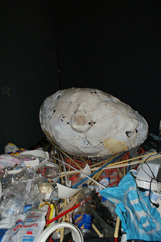 20130704201707-the_plastic_nest_from_the_pacific