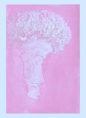 20130709213201-bird_pink_detonation_1_wb_copy
