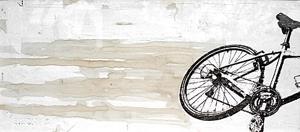 20080115-bike19pt5x9temp