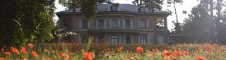 20130714102251-hermitage_ete03