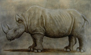 20130714181200-_rhino4