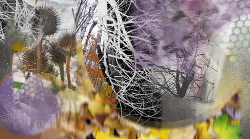 20130719063444-autumn_sallurefolio